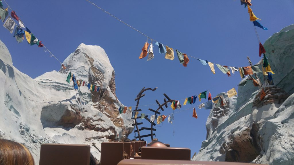 Backwards at Expedition Everest