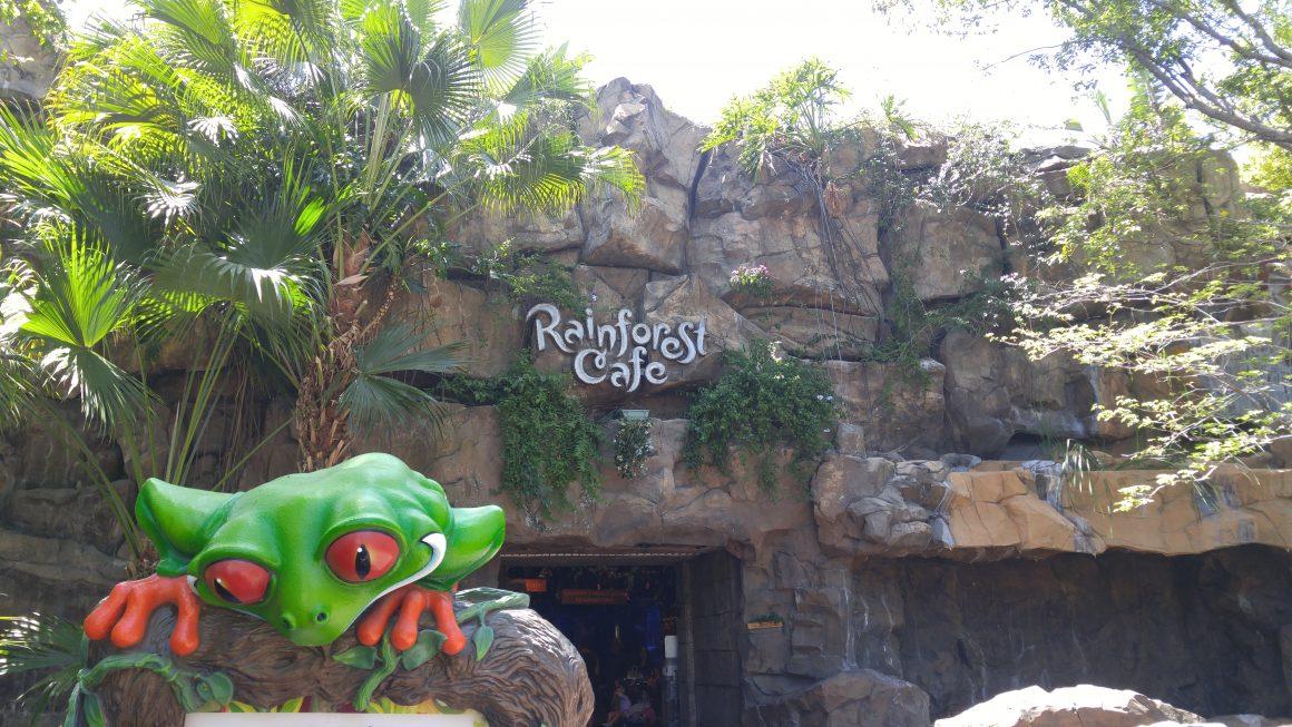 Rainforest Cafe at Animal Kingdom
