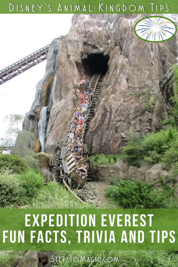 Fun Facts About Expedition Everest - #StepstoMagic