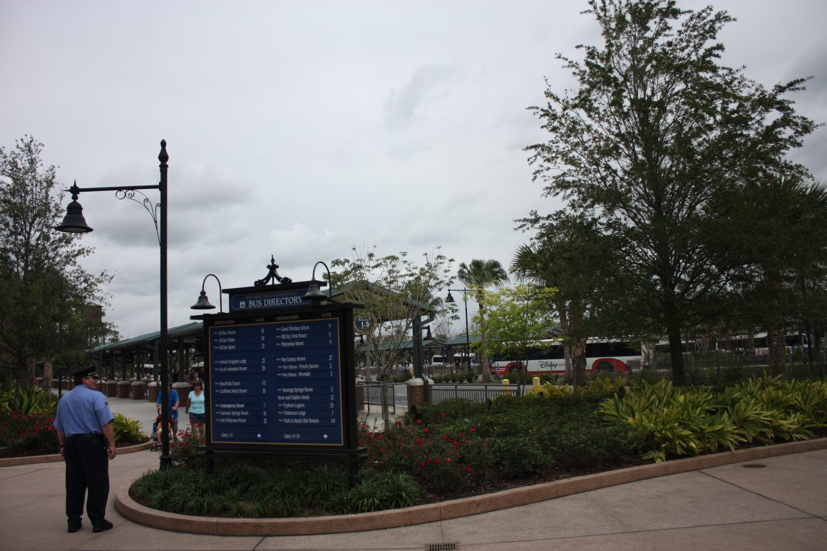 Disney Springs Bus TransportationDisney Springs Bus Transportation
