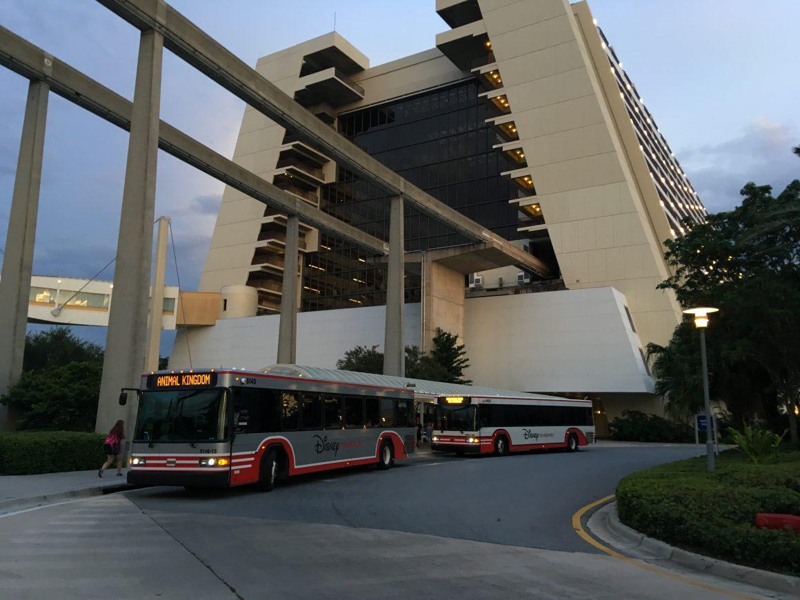 Contemporary Resort Bus Transportation