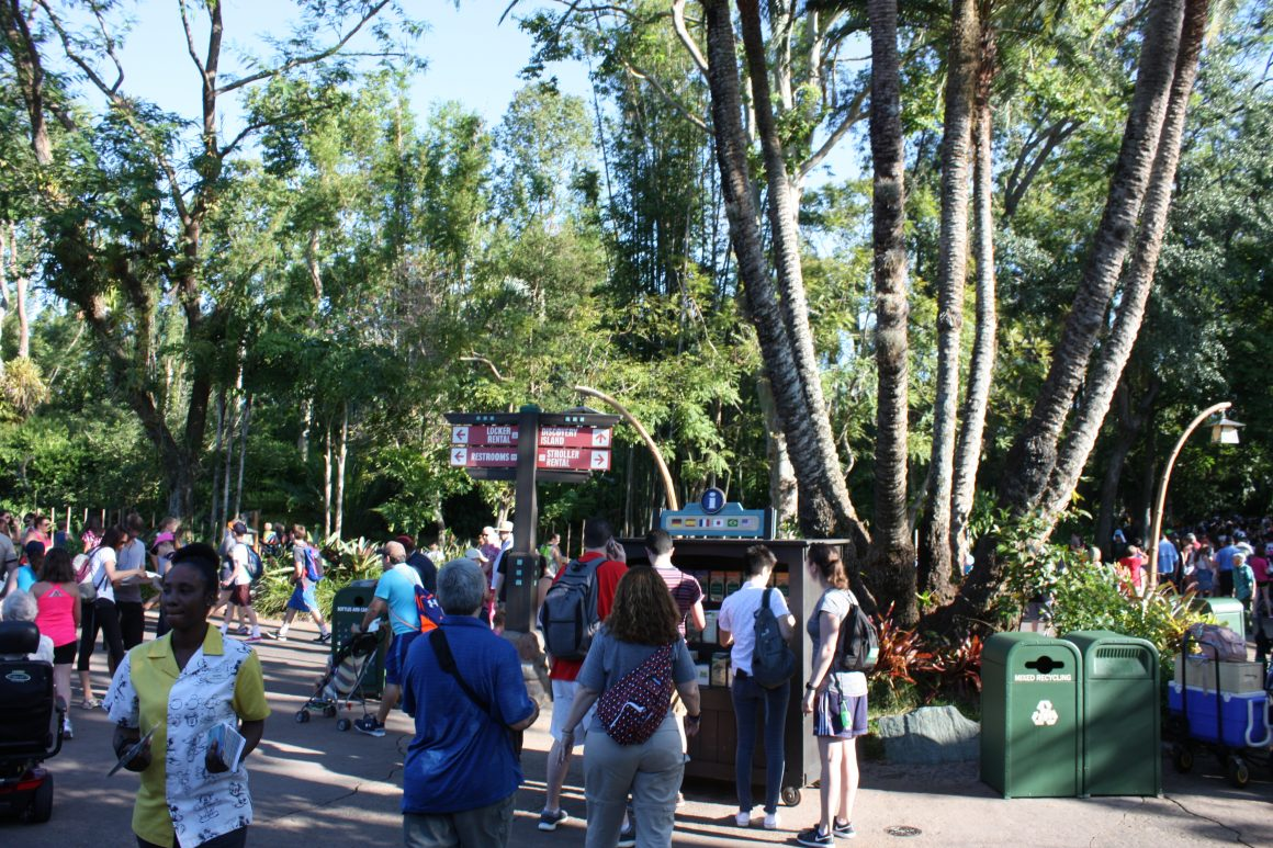 Animal Kingdom Times Guides and Maps
