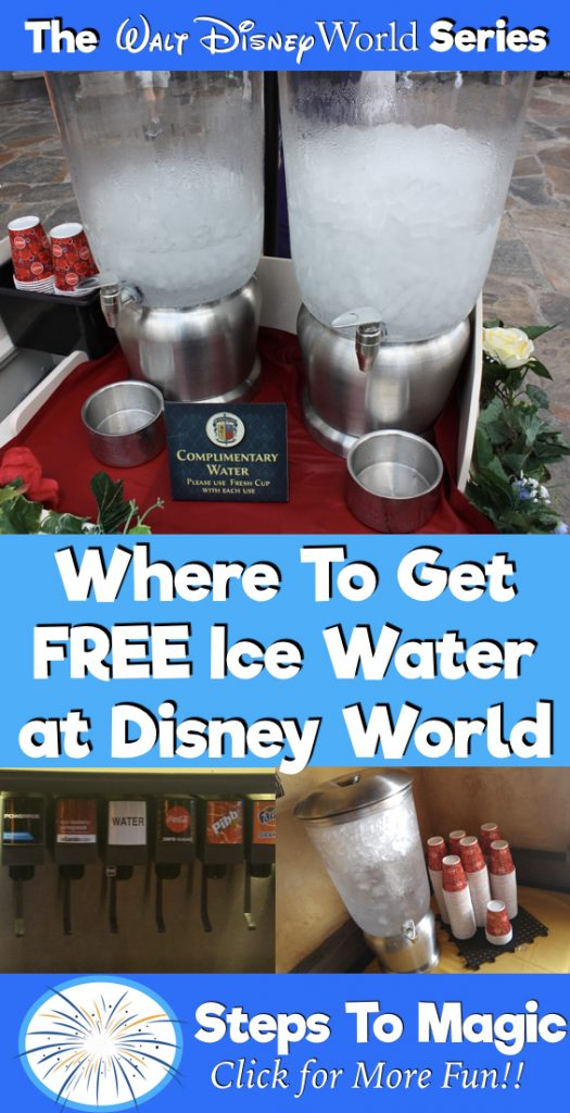 Free Water at Disney World