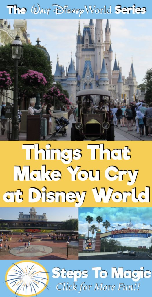 Things That Make You Cry at Disney World